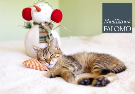 Vermeiden Sie diese 7 Fehler für einen erholsamen Schlaf im Winter