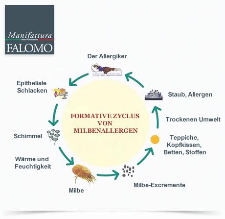 Die Milben-Lebenszyklus: 4 einfache Tipps, um die Milben zu bekämpfen!