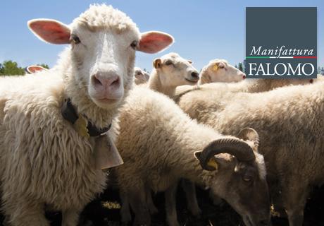 Die Wolle und die Matratzen. Die Manifattura Falomo Gründe