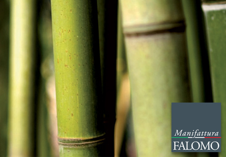 Der Bambus in der Matratze: Hier sind die Gründe!