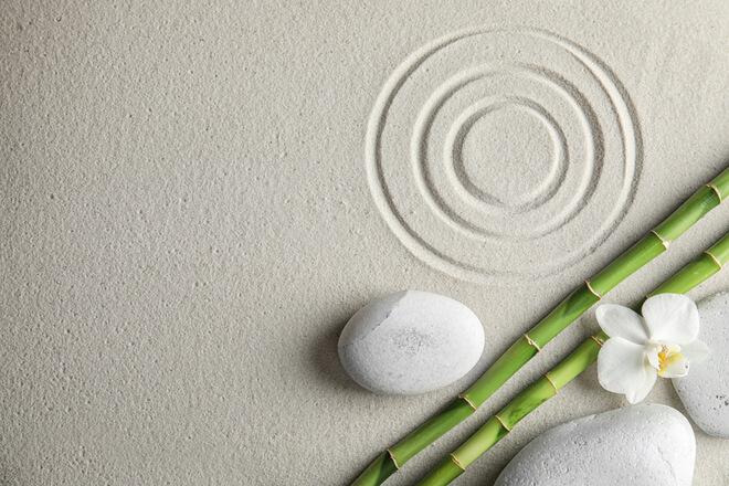Bambus: alle Vorteile dieses natürlichen Stoffes – auch für Ihren Schlaf