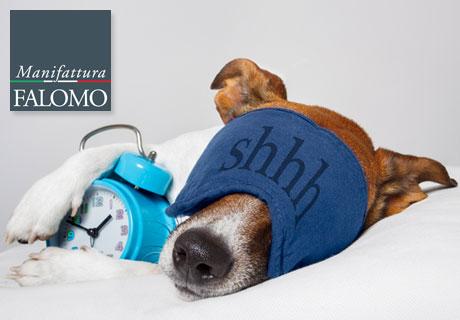 Schlafen Tiere wie wir?