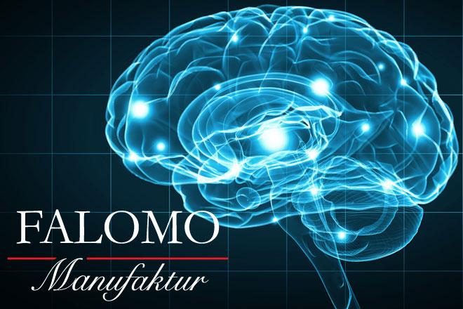 Schlaf und Gehirn: 8 überraschende Vorteile einer gesunden Erholung!