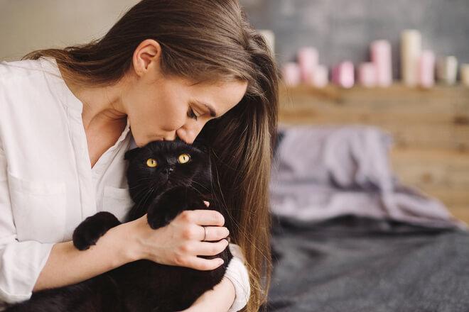 Schläft Ihre Katze bei Ihnen? Dann sollten Sie Folgendes wissen